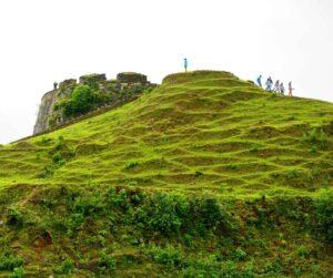 Kodachadri-Hill